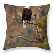 Perched At Smith Rock Throw Pillow