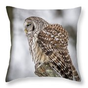 Perched Barred Owl Throw Pillow