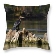 Perched Cormorant Throw Pillow