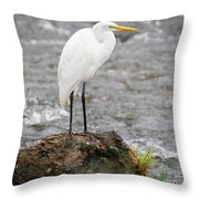 Perched Great Egret Throw Pillow