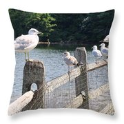 Perched Gulls Throw Pillow