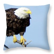 Perched On A Tree Throw Pillow