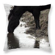 Percheron Kiss Throw Pillow