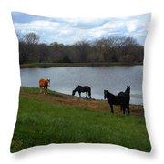 Percheron Pasture Throw Pillow