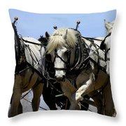 Percherons Throw Pillow