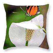 Perching Butterfly Throw Pillow