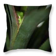 Perching With Comfort Throw Pillow