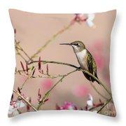 Perching Ruby-throated Hummingbird Throw Pillow