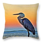 Perdido Crain Throw Pillow