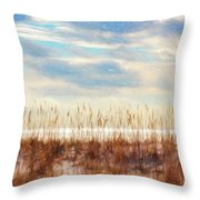 Perdido Painted  Throw Pillow