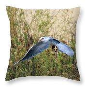 Peregrine Falcon Trips Throw Pillow