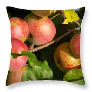 Perfect Apples Throw Pillow
