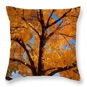 Perfect Autumn Day With Blue Skies Throw Pillow