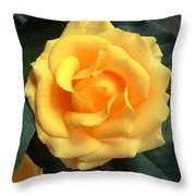 Perfect Bloom Throw Pillow