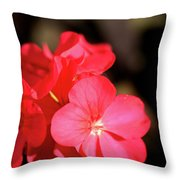 Perfect Cluster Throw Pillow