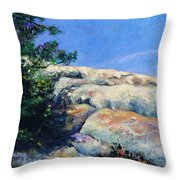 Perfect Day At Lizards Mouth Throw Pillow