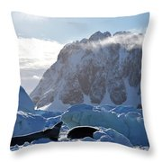 Perfect Day. Throw Pillow