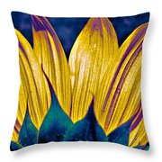 Perfect Form Throw Pillow