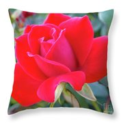 Perfect Form - Knock Out Rose Throw Pillow