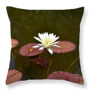 Perfect Lily  Throw Pillow