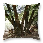 Perfect Picnic Tree Throw Pillow