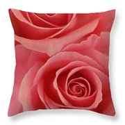 Perfect Pink Roses Throw Pillow