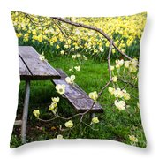 Perfect Place To Picnic Throw Pillow