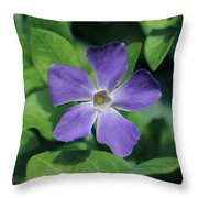 Perfect Purple Periwinkle Throw Pillow