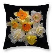 Perfect Ring Of Daffodils Throw Pillow