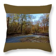 Perfect Serenity Throw Pillow