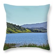 Perfect Spring Day Throw Pillow