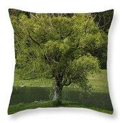 Perfect Tree Swing Throw Pillow