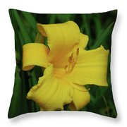 Perfect Yellow Daylily Flowering In A Garden Throw Pillow