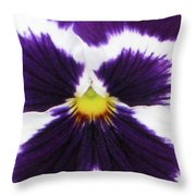 Perfectly Pansy 01 Throw Pillow
