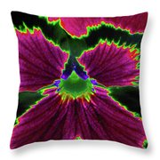 Perfectly Pansy 01 - Photopower Throw Pillow