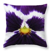 Perfectly Pansy 02 Throw Pillow