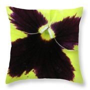 Perfectly Pansy 05 Throw Pillow