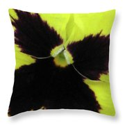 Perfectly Pansy 06 Throw Pillow