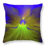 Perfectly Pansy 08 - Photopower Throw Pillow