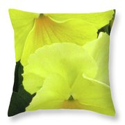 Perfectly Pansy 09 Throw Pillow