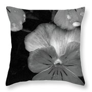 Perfectly Pansy 12 - Bw - Water Paper Throw Pillow