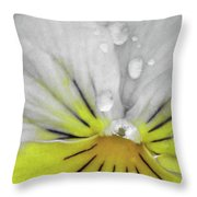 Perfectly Pansy 16 - Bw - Yellow Throw Pillow