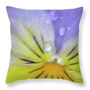 Perfectly Pansy 16 Throw Pillow
