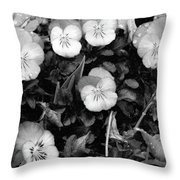 Perfectly Pansy 18 - Bw - Water Paper Throw Pillow