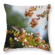 Perfectly Peach Throw Pillow