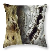 Perforations Throw Pillow