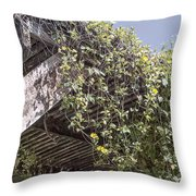 Pergola And Vines Throw Pillow