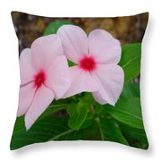 Periwinkle Flower 2 Throw Pillow