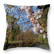 Perky Pink Throw Pillow