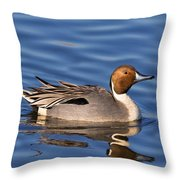 Perky Pintail Throw Pillow